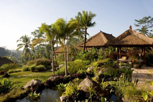 the villa area - Villa Bayad, Stunning,luxurious,private 4 bedrooms - Ubud - rentals