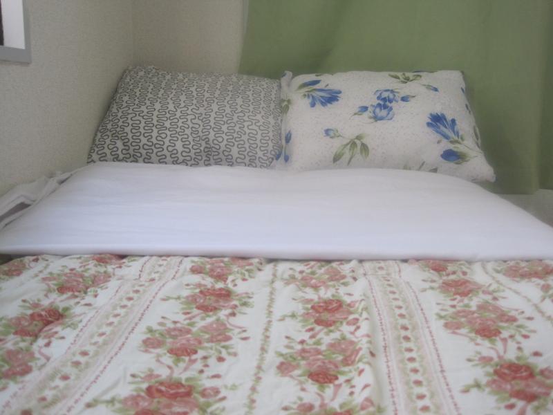 Double bed for 2 guests - JR-Dream Stay Apartment Shinjuku - Shinjuku - rentals