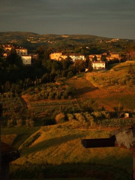 view from the upstairs bathroom - Quiet Tuscan village to relax in - Cevoli di Lari - rentals