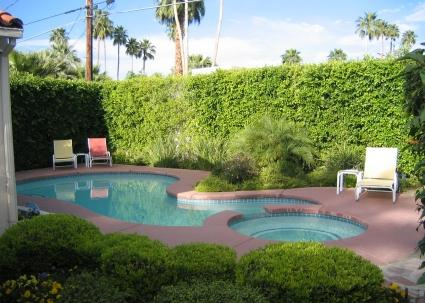 PS Caballeros - Image 1 - Palm Springs - rentals