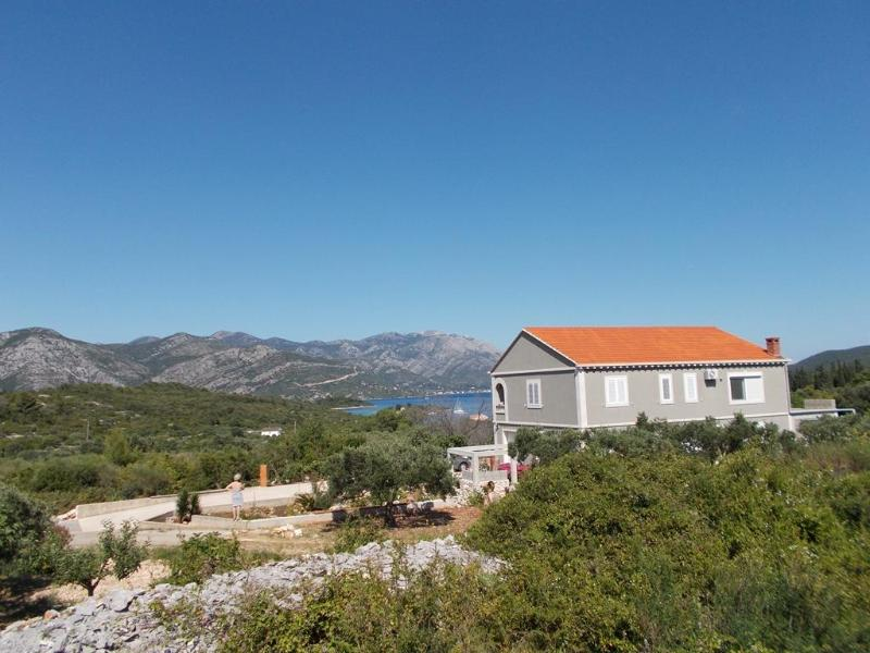 The house - Apartment Niki - Korcula - rentals