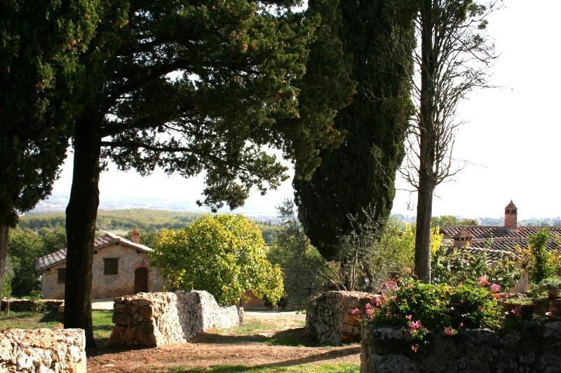 Vista from the Parking - Farm apartment Il Granaio in Siena countryside - Siena - rentals