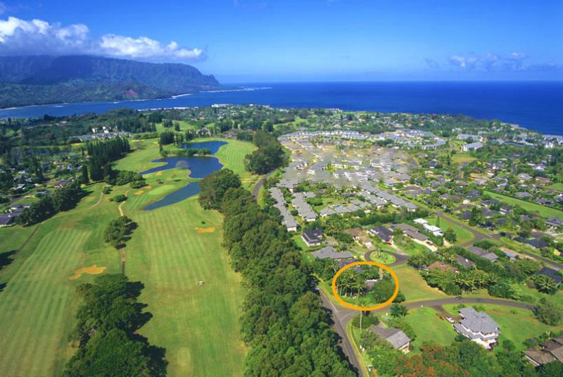 Air View Location - Secluded Family Friendly Home (Newly Listed) - Princeville - rentals