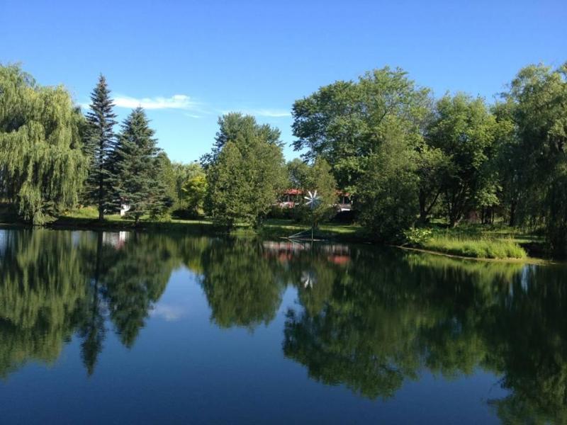 Heaven on earth - Beautiful cottage in 50 acres of land near Lake Simcoe - Uxbridge - rentals