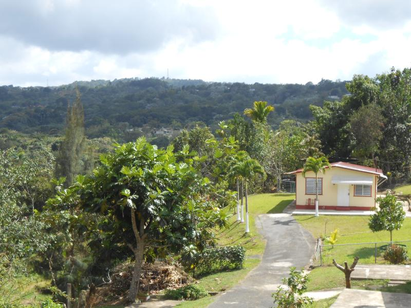 View of home from top of hill - Cozy Mountain Paradise  (Casa Mendez) - Utuado - rentals