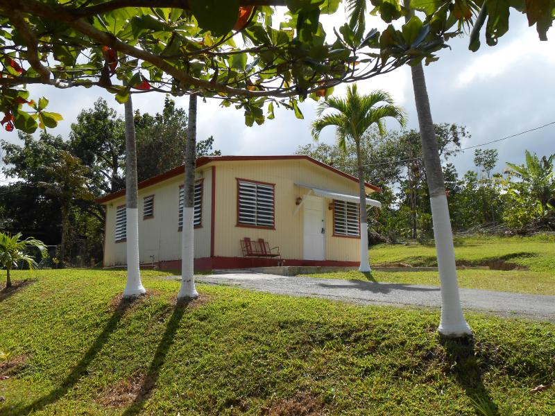 Beautiful front yard property - Casa Mendez -Cozy Mountain Paradise w/Wi-Fi - Utuado - rentals