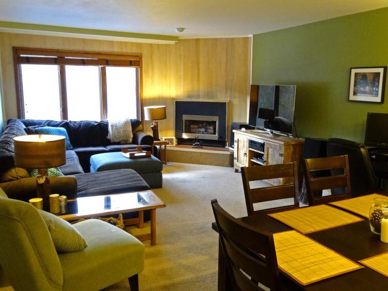 Ski In/Out 2BR Breckenridge Retreat with Sauna - Image 1 - Breckenridge - rentals