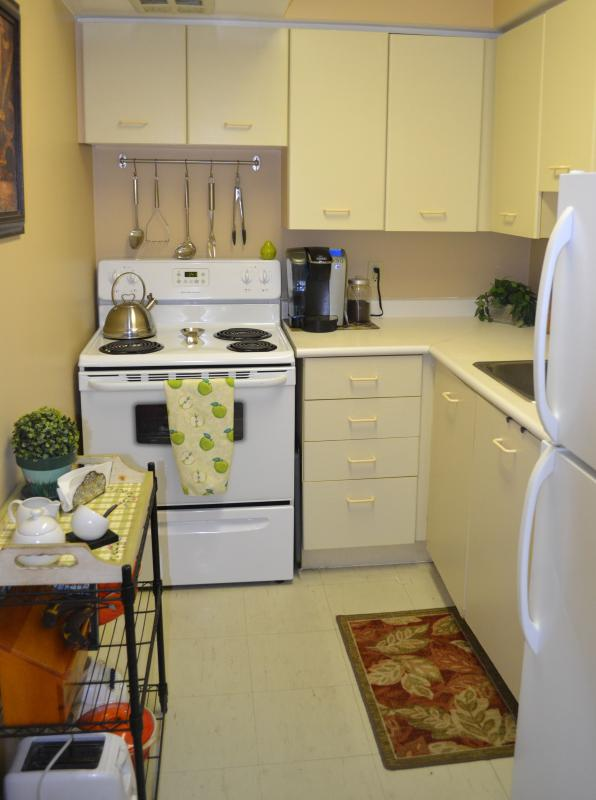 Kitchen - Quiet, Cozy and Bright 1 bedroom apt in the GTA (Toronto, Canada) - Ontario - rentals