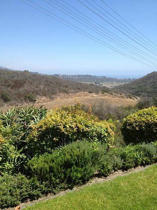 View from property adjacent to San Onofre State Park - San Clemente Tropical Getaway,  CHECK OUT OUR REDU - San Clemente - rentals