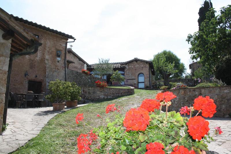 Spacious Apartment Il Picchio in Siena countryside - Image 1 - Siena - rentals