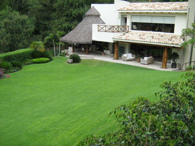 Violetas - Image 1 - Cuernavaca - rentals