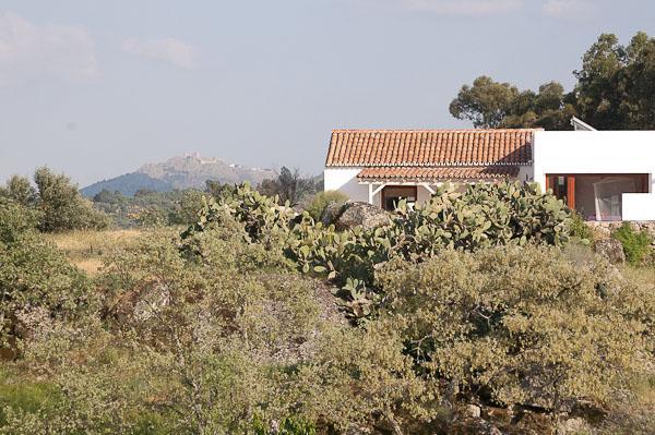 Casa Amor Perfeito Spa Quinta Serra de São Mamede - Image 1 - Castelo de Vide - rentals