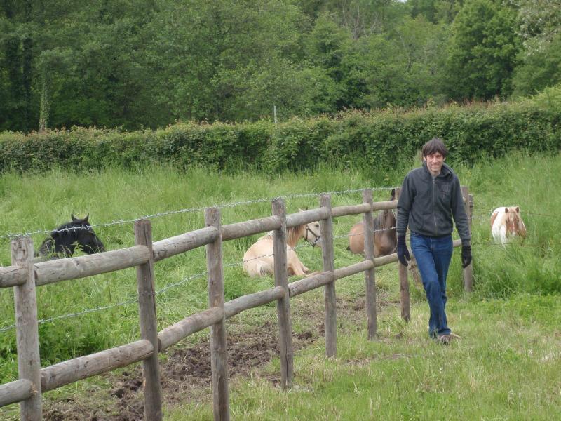 les chevaux pres  du canal - Farm along a Canal - Burgundy - rentals