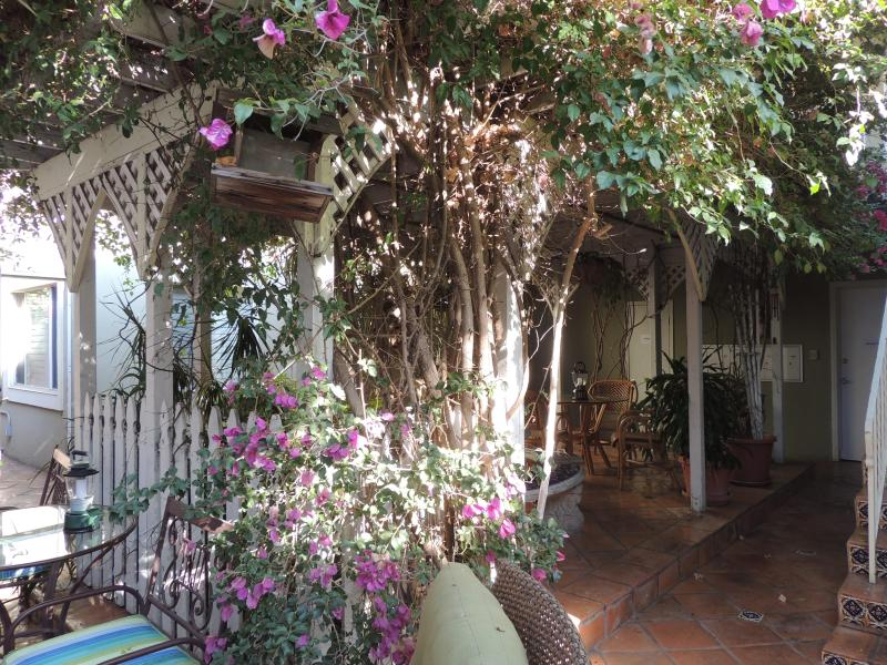 Out side area - Tropical Ambiance/3 Min to convention cnt/dwn town - Pacific Beach - rentals