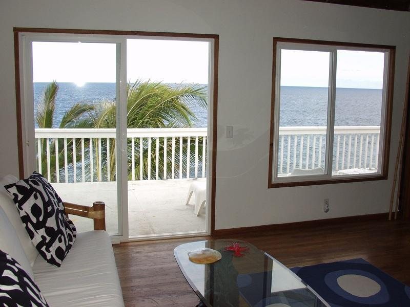 Oceanfront 1bd in tropical area, near beach - Image 1 - Pahoa - rentals