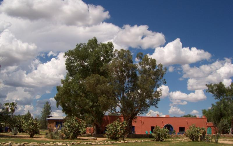 Hacienda - Historic Southern Arizona Ranch -  very private! - Sasabe - rentals