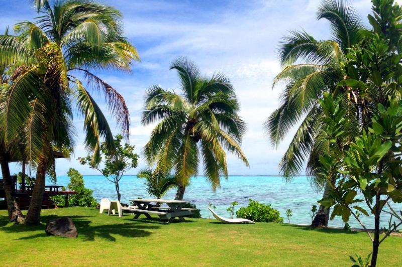 Garden - Fare Tahatai - MOOREA -  white sand beach - Haapiti - rentals