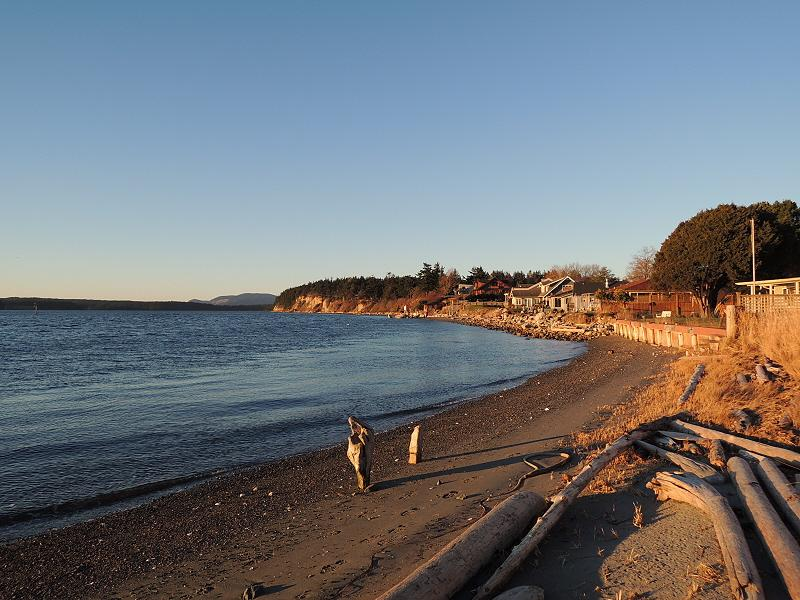 #8 Beach House - Right on the Water & Village Too! - Image 1 - Lopez Island - rentals
