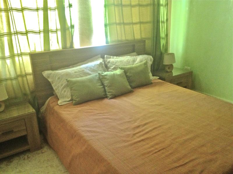 Beautiful 3 bedroom condo in Playa Turquesa Bavaro - Image 1 - Bavaro - rentals