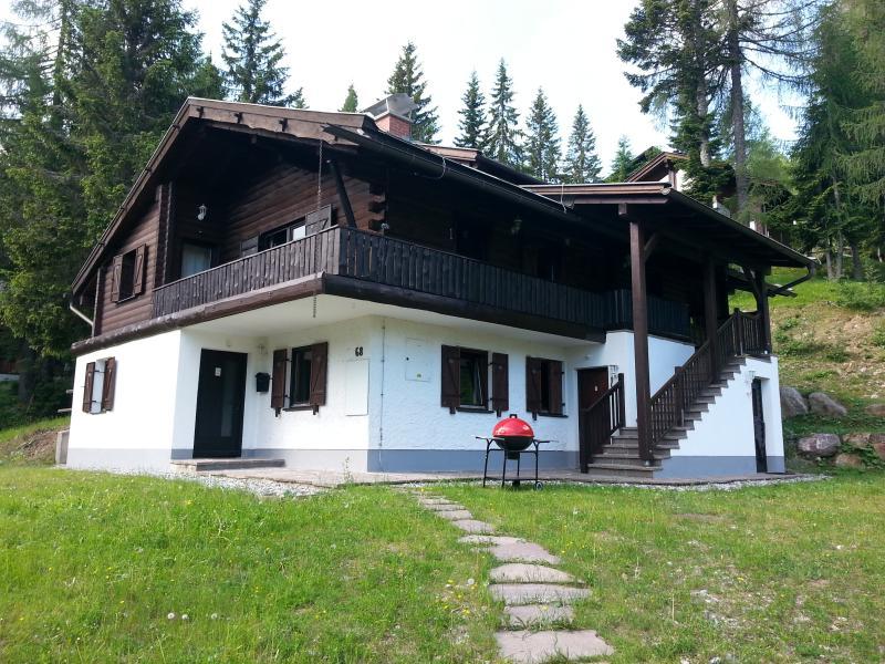 Fichtenblockhuette in Summer - Duplex Apartment in Austrian Alps - Weissensee - rentals