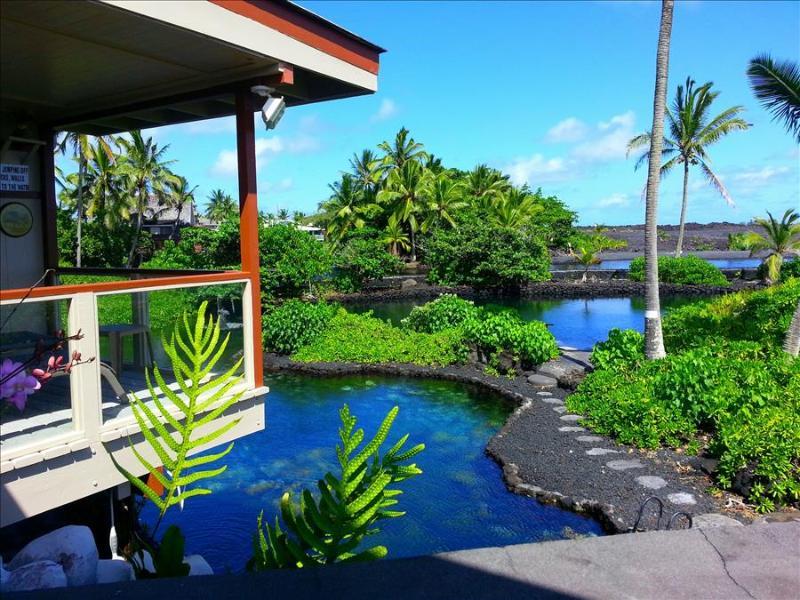 Kapoho Estate Oceanfront Home - Image 1 - Kapoho - rentals