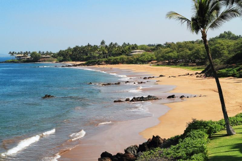 MAKENA SURF RESORT, #F-307^ - Image 1 - Maui - rentals
