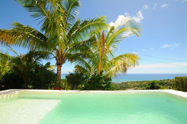 RODRIGUES; Small Villa, pool housemaid cook wifi - Image 1 - Port Mathurin - rentals