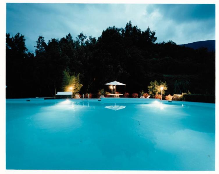 Villa  in Tuscany  - Florence  hills - Image 1 - Carmignano - rentals