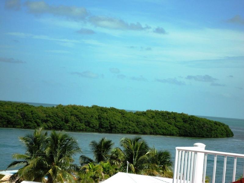 Views of Vaca cut from roof deck - Luxurious 3bd/3bth Villa - Your Keys Escape - Marathon - rentals