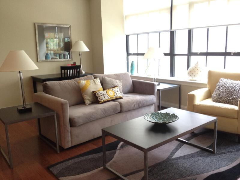 Living Room - Center City Philly. Relax in Luxury and sleeps 6 - Philadelphia - rentals