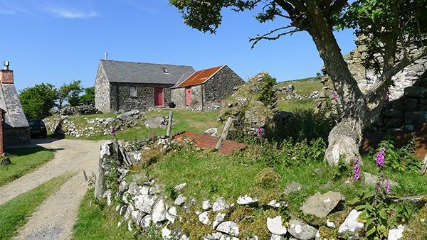 Holiday Cottage - Pen y Mynnydd, Dinas Mountain - Image 1 - Pembrokeshire - rentals
