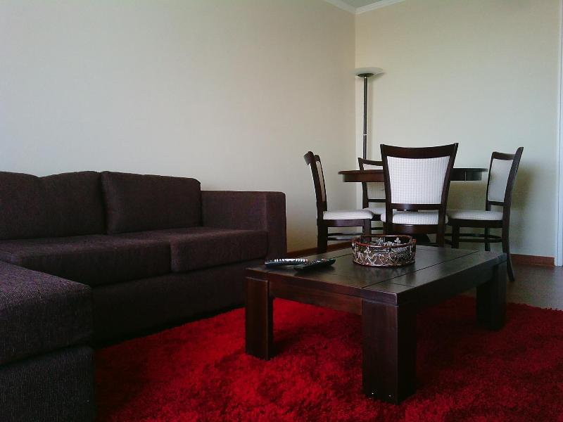Furnished apartment in Santa Cruz,Colchagua valley - Image 1 - Santa Cruz - rentals