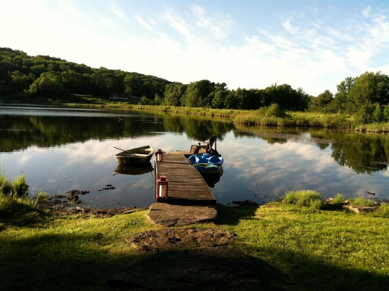 View from cabin - LAKE FRONT DESIGN Log Cabin  - CATSKILLS, NY. - Stamford - rentals