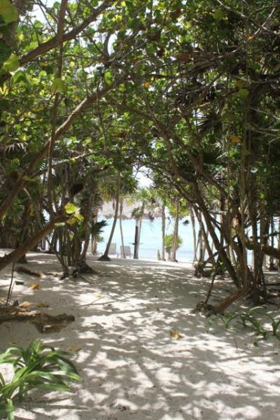 Path to the beach - Villa Leona: Mex/African themed eco beach house - Soliman Bay - rentals