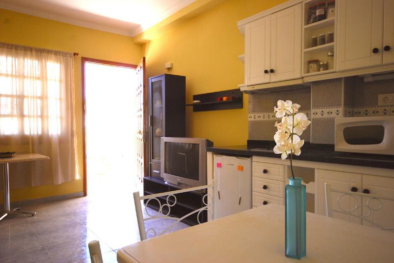 Confortable apart pool & garden - Image 1 - San Bartolome de Tirajana - rentals