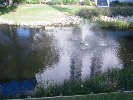 View - Gulfside Large Garden 1081 - Sarasota - rentals