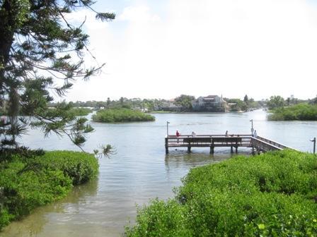 View - Bayfront Small Garden Unit Z - Siesta Key - rentals