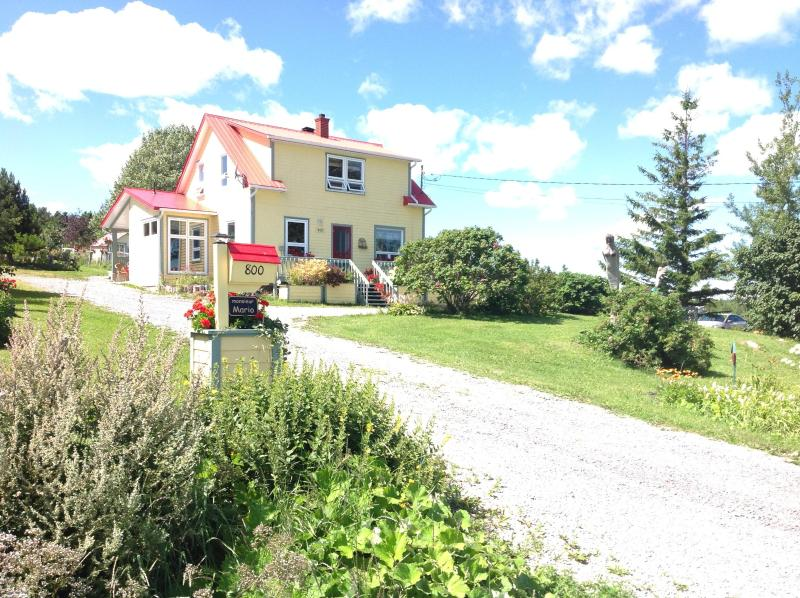 Summer Front view - At the end of the Gaspe peninsula, Mr Mario's House welcomes you - Gaspe - rentals
