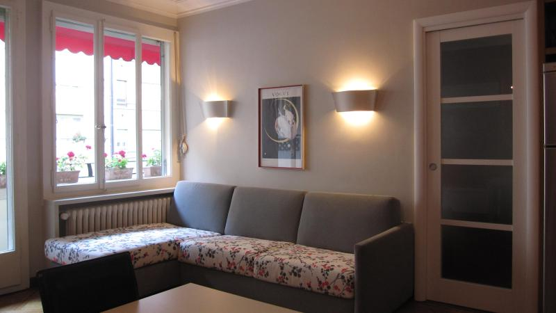 Absolutely lovely & comfortable place-town center - Image 1 - Geneva - rentals