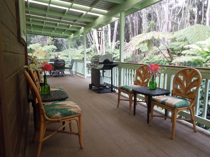 Aloha Sweet Hale- New Hot Tub! - Image 1 - Volcano - rentals