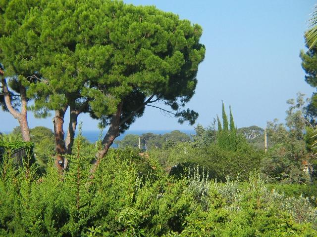 View from the terrace - Charming apartment on the Cap d'Antibes - Antibes - rentals