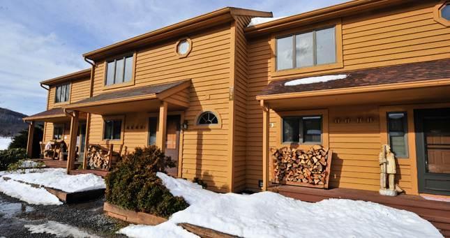 Deerfield 079 - Image 1 - Canaan Valley - rentals