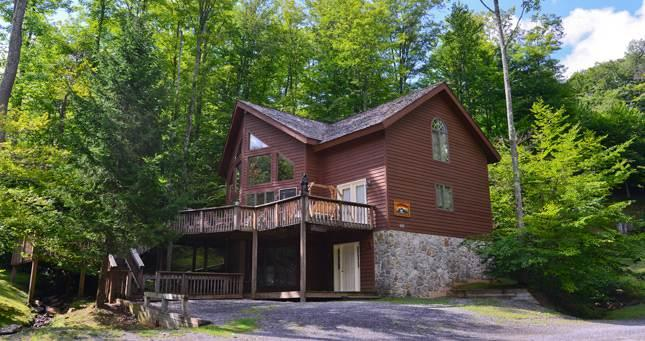 NF 35 - 426 Slopeside Road - Image 1 - Canaan Valley - rentals