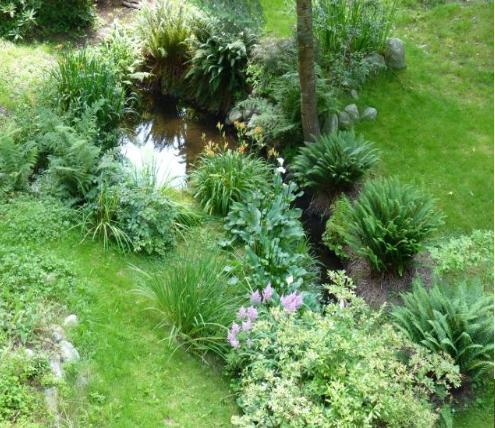 Pond garden and creek. - River and Rose B&B - Maple Ridge - rentals