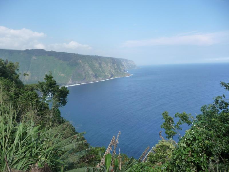 Cliff's edge - Oceanfront 2BRM, Waipio's Beach below,orchard - Kukuihaele - rentals