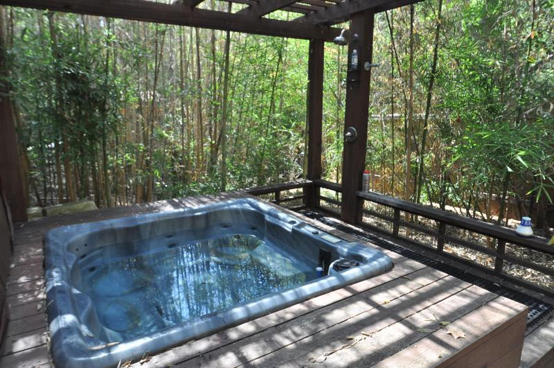Enjoy the hot tub and outdoor shower, year round! - The Austinite #B - 2/1 w/ awesome deck and hot tub - Austin - rentals