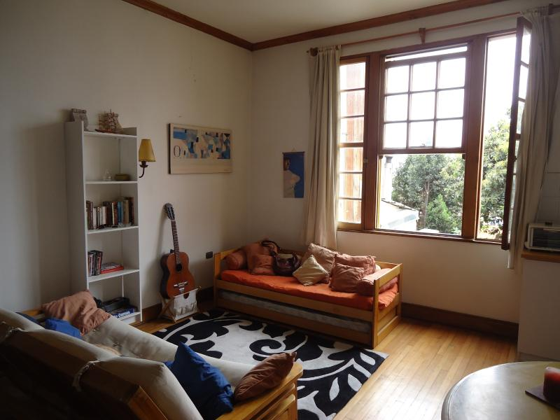 LOFT APARTMENT IN CERRO ALEGRE, VALPARAÍSO, CHILE! - Image 1 - Valparaiso - rentals