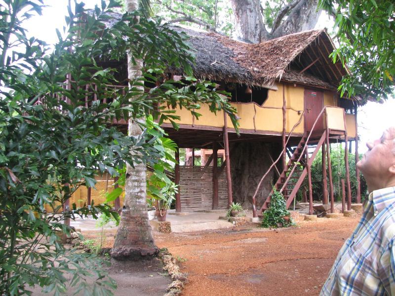 Suli House - Suli Tree house - Diani - rentals