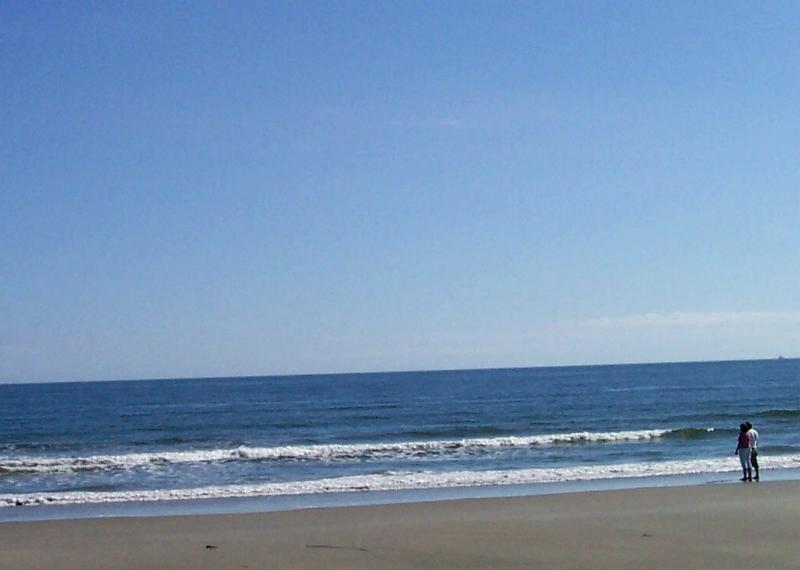 Our gorgeous beach 1 mile away - HISTORIC CHARLESTON OFFERS THE BEST OF ALL WORLDS -Location/ Deal 1m Beach/6Dwtn - Mount Pleasant - rentals
