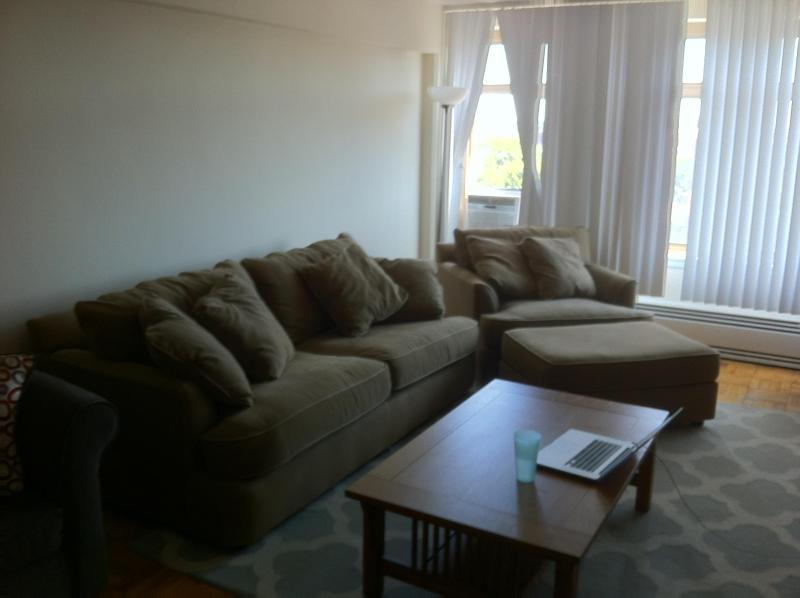 Living room - Spacious Coolidge Corner Apartment - Boston - rentals